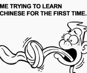 Best Learning Chinese Memes